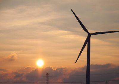 naturschutz-windparkIMG_601